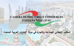 Newsletter 17 - IICUAE