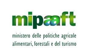 """Centinaio: """"Firmati decreti partecipazione Mipaaft a Expo Dubai 2020 e incentivi a giovani agricoltori"""""""