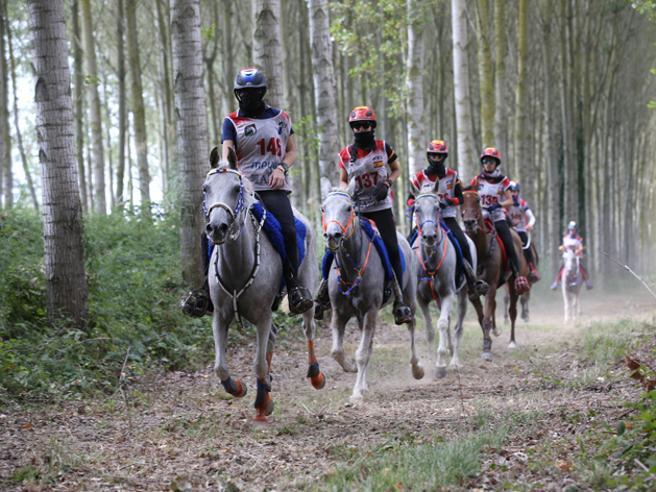 A San Rossore «Toscana Endurance» la maratona a cavallo più bella del mondo